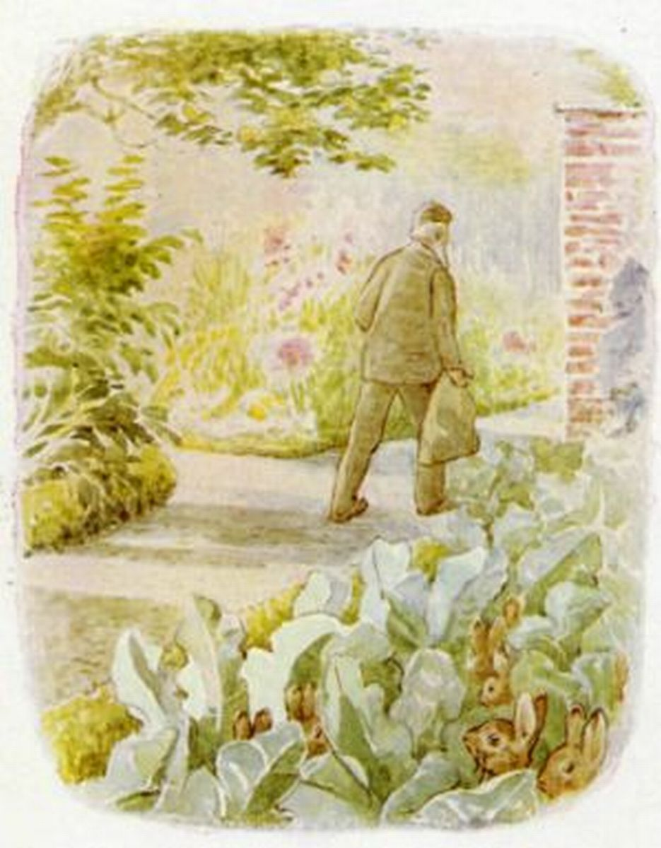 The Tale Of Flopsy Bunnies, by Beatrix Potter.