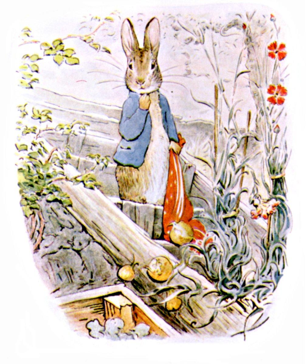 Bp4 on Tale Peter Rabbit Free Printables