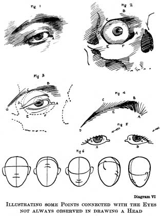 The practice science of drawing by harold speed diagram vi illustrating some points connected with the eyes not always observed in drawing a ccuart Gallery